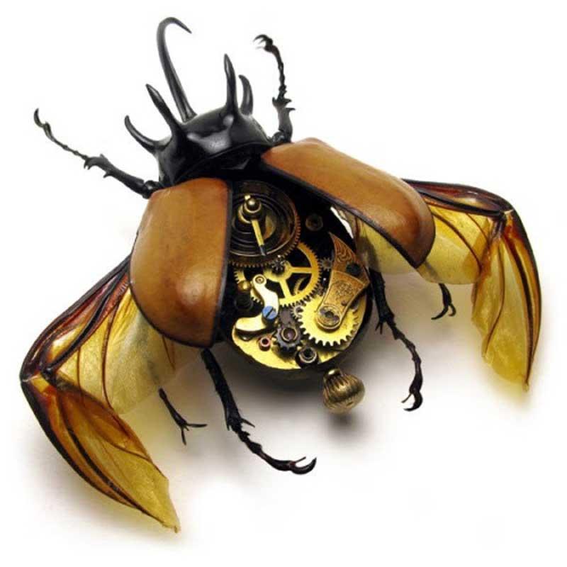 escarabajo steampunk